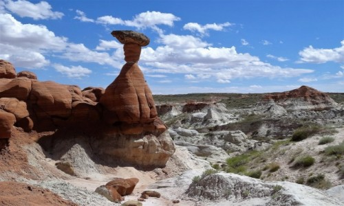 Zdjecie USA / Utah / Paria Rimrocks Toadstool Trail / Hoodoos