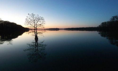 Zdjęcie USA / brak / Luizjana / Mississippi o zmierzchu