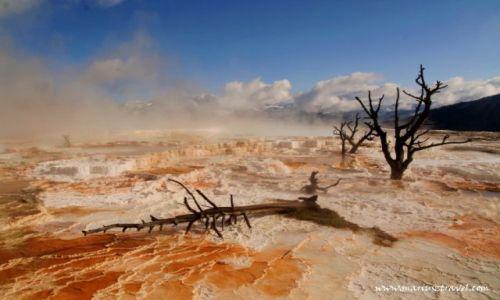 Zdjecie USA / Wyoming / Yellowstone / gorace żródła