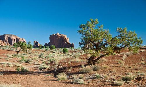 Zdjecie USA / Arizona / monument valley  / monument valley 2