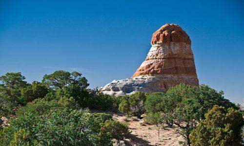Zdjecie USA / Arizona / Arizona / gdzieś w arizonie 1