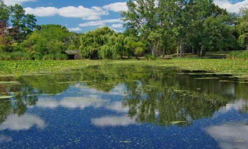 Zdjęcie USA / brak / Illinois / Chain O`Lake State Park