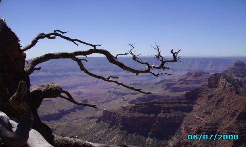 Zdjecie USA / Arizona / Grand Canyon / Grand Canyon North  Rim