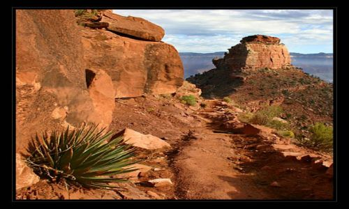 Zdjęcie USA / Arizona / na szlaku / Grand Canyon 2
