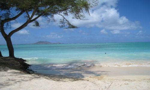 Zdjecie USA / Hawaje / Kailua Beach / Kailua Beach