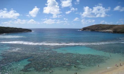 Zdjecie USA / Hawaje / Hanauma Bay - Oahu / Hanauma Bay