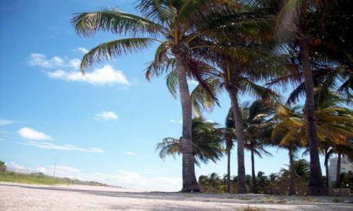 Zdjęcie USA / Floryda / Miami / Miami - South Beach