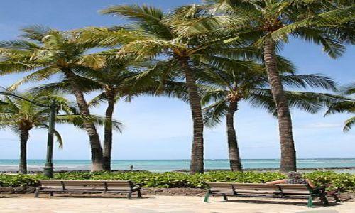 Zdjecie USA / Hawaje / Wyspa Oahu / Waikiki Beach II