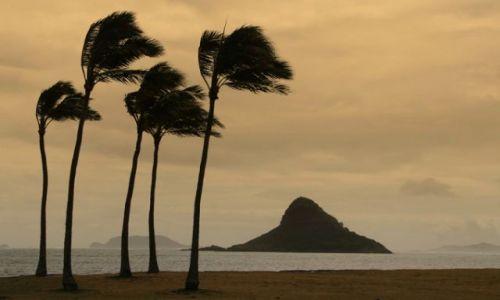 Zdjęcie USA / Hawaje / Wyspa Oahu / Chinaman's Hat Island