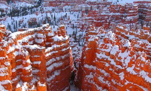 Zdjecie USA / Utah / Bryce Canyon / Bryce Kanion 7