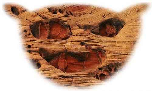 Zdjecie USA / Utah / Formacje skalne w kanionie Burr Trail / Skalny uśmiech