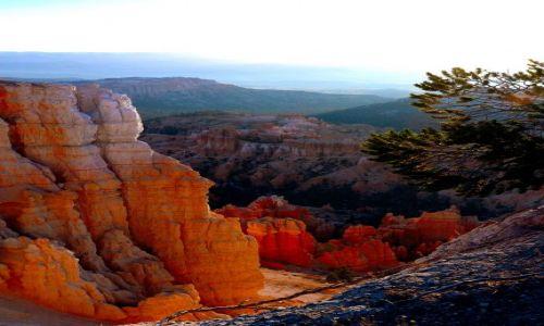 Zdjecie USA / Utah / Bryce National Park / InspirationPoint / ranek w Bryce