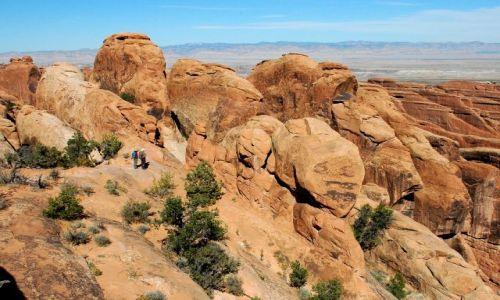 USA / Utah / Arches National Park / Devils Garden  / Devils Garden