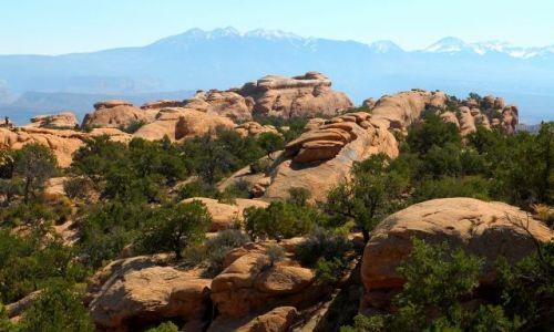 USA / Utah / Arches National Park / Devils Garden  / Na dachu Devils Garden