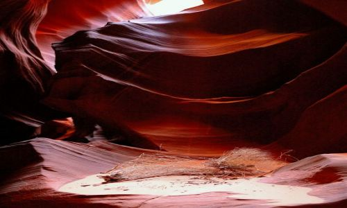 USA / Arizona / Upper Antelope Canyon / w kanionie Antelope
