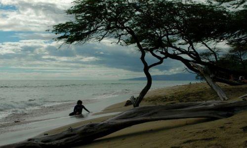 Zdjęcie USA / Hawaje / Maui / Papalua Wayside Park / Cudowne plaże Maui - Papalua