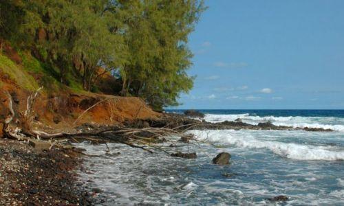 Zdjecie USA / Hawaje/Maui / Red Sand Beach / Plaża