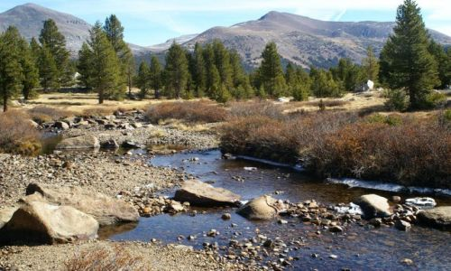 Zdjecie USA / California / Yosemite NP / brakuje tylko wozu osadników