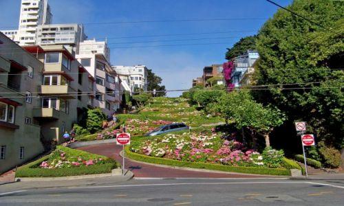 Zdjecie USA / brak / San Francisco/ Kalifornia / Lombard Street