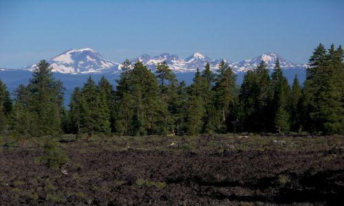 Zdjęcie USA / brak / Oregon / Lava Cast Forest 2