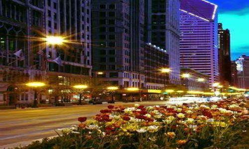 Zdjęcie USA / brak / Chicago / Chicago Wieczorem