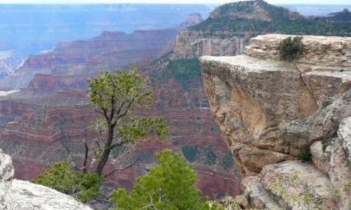 Zdjecie USA / Arizona / GRAND kANION / Przyroda Kanionu