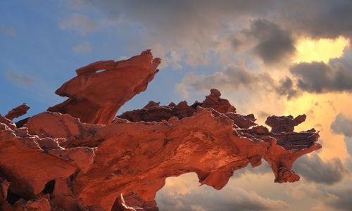 Zdjecie USA / Nevada / Zaczarowana Dolina / Legowisko kojotów