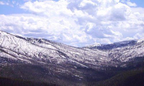 Zdjecie USA / Wyoming / Yellowstone Nat. Park / na przełęczy