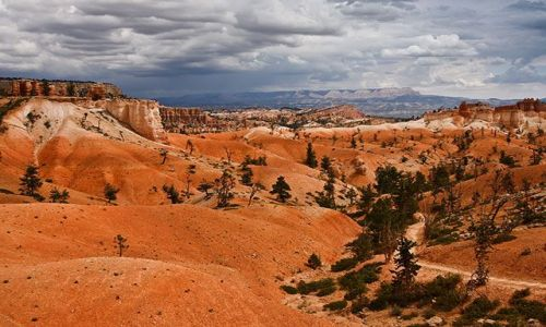 Zdjecie USA / stan Utah / Bryce Canyon NP / Bryce Canyon