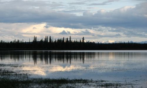 Zdjecie USA / Alaska / Park Narodowy Wrangla-Świętego Eliasza / Widok na szczyty Parku Narodowego Wrangla-Świętego Eliasza