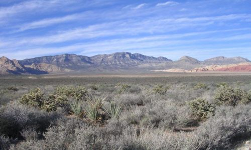 Zdjecie USA / Nevada / Park Narodowy Red Rock Canyon / malowane skały,