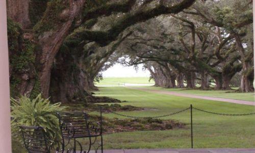Zdjęcie USA / Luizjana / godzina jazdy od New Orleans / Oak Alley Plantation