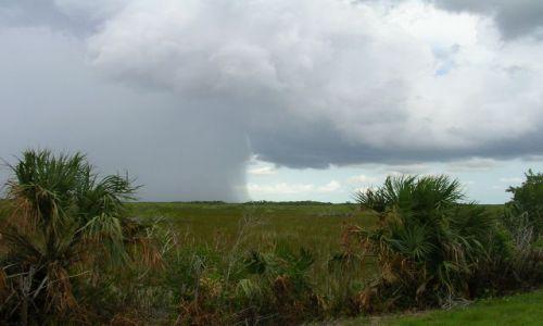 Zdjecie USA / Floryda / Everglades / pada i nie pada