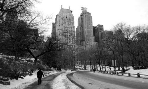 Zdjęcie USA / USA / Nowy Jork / Central Park zimą