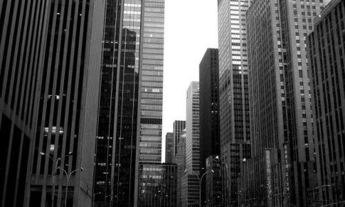 Zdjęcie USA / USA / Nowy Jork / Las wieżowców