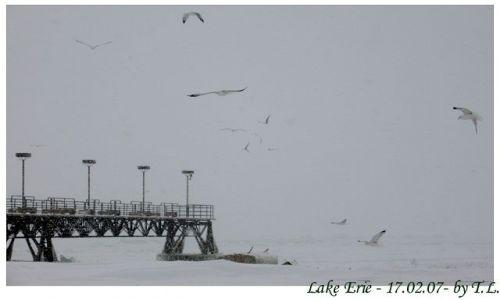 Zdjecie USA / Jezioro Erie / Cleveland / Zima nad Erie 2