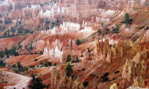 Zdjecie USA / Utah / Bryce NP / Bryce w pochmurny dzień