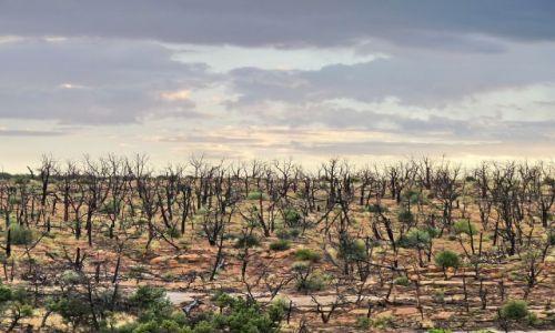 Zdjęcie USA / Colorado / Mesa Verde / Mesa Verde - zachód