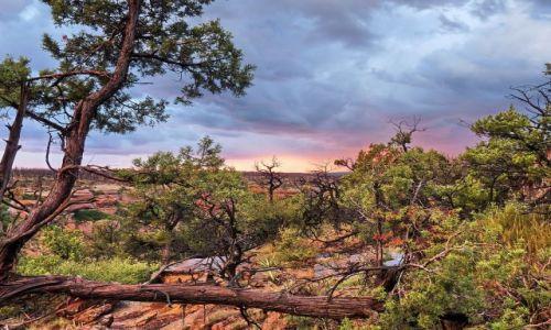 Zdjecie USA / Colorado / Mesa Verde NP / Mesa Verde o zachodzie słońca