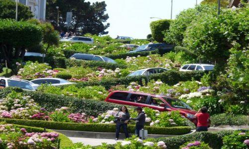 Zdjecie USA / California / San Francisco / Lombard Street - najstromsza uliczka w San Francisco
