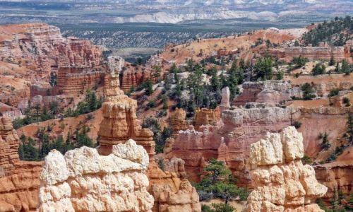 Zdjecie USA / Utah / Bryce Canyon NP / Skalne dzieła sztuki