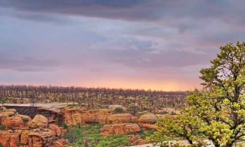 Zdjęcie USA / Colorado / Mesa Verde NP / Tajemnicze niebo