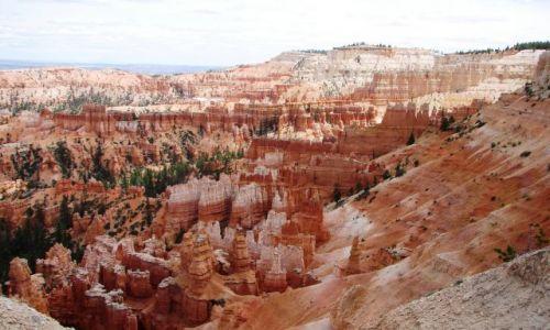 Zdjecie USA / Utah / Park Narodowy Bryce Canyon / Bryce Canyon