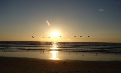 Zdjecie USA / Kalifornia / Moss Landing, Wybrzeże Pacyfiku / Zachód słońca i
