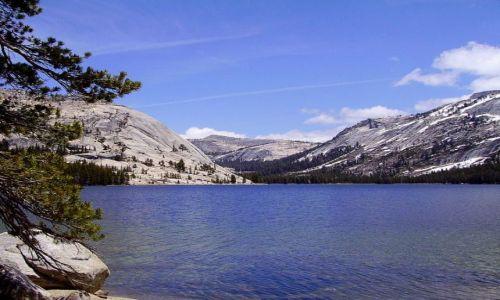 Zdjęcie USA / Nevada / w drodze do Yosemite /  Tenaya Lake