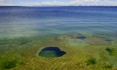 Zdjecie USA / Wyoming / Yelowstone Nat.Park / gorące żródła w zimnym Yelowstone Lake