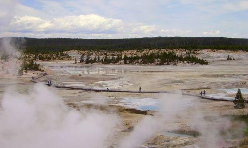 Zdjecie USA / Wyoming / Park Narodowy Yellowston / ścieżki w Yellowston
