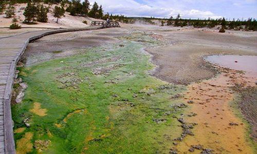 Zdjecie USA / Wyoming / Nat.Park Yellowstone / paleta artysty w Yellowstone