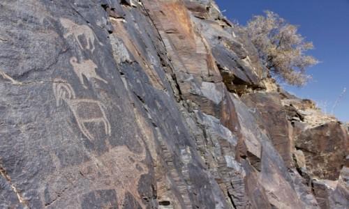 Zdjęcie UZBEKISTAN / Nawoi / Sarmysh / Petroglify w wąwozie Sarmysz