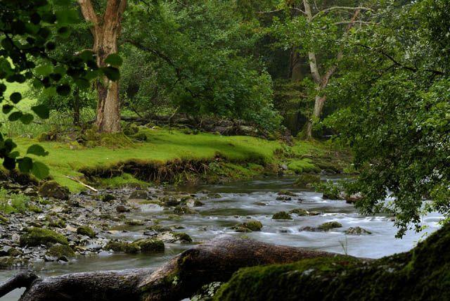 Zdjęcia: Betws-Y-Coed, Snowdon, Rzeka Lafon Llugwy, WALIA